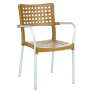 Picture of Gala Resin Dining Arm Chair
