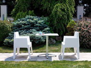 Picture of Box Resin Outdoor Dining Arm Chair